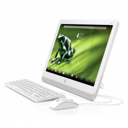 All-in-One HP Slate 21-k100  21.5 Touch""